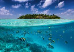 Malediwy – wakacje w raju